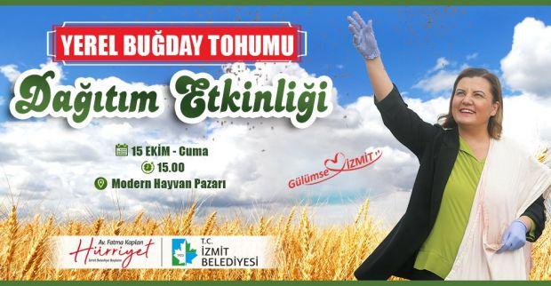 İzmit Belediyesi çiftçiye,  yerel buğday dağıtımına başlıyor