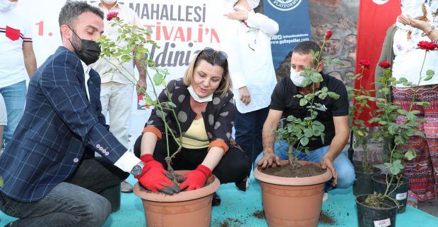 """İzmit Belediyesinden Gültepe'de gül kokulu festival Hürriyet, """"Gültepe güllerle anılacak"""""""