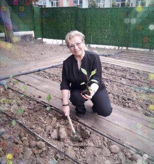 Kocaeli'nde bir ilk; okulda hobi bahçesi oluşturuldu