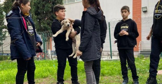 Petkim Ortaokulu, Köpük'ün yeni yuvası oldu
