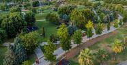 Kocaeli'de yeşil alan 23 milyon metrekareyi...